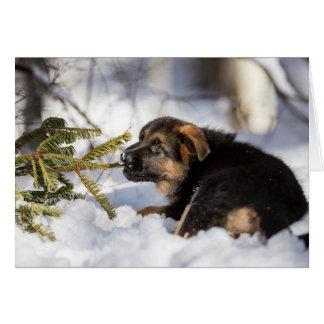 Frohe Weihnacht-Schäferhundkarte Karte