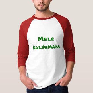 Frohe Weihnacht-und guten Rutsch ins Neue T-Shirt