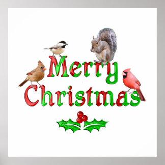 Frohe Weihnacht-Vögel und Eichhörnchen Poster