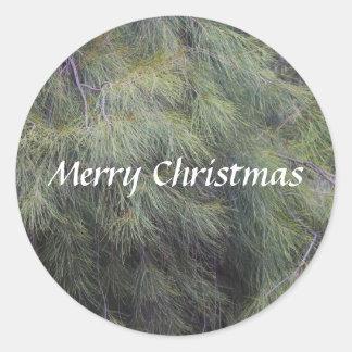 Frohe Weihnachten in den Kiefern Runder Aufkleber