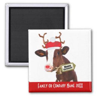 Frohe Weihnachten! Lustige Feiertags-Kuh in der Quadratischer Magnet