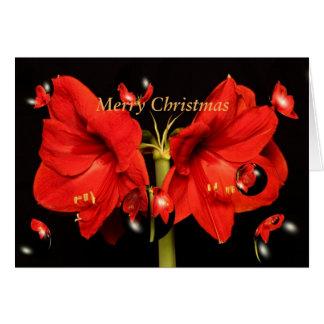 Frohe Weihnachten mit Amaryllis- und Blasenkarte Karte
