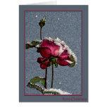 Frohe Weihnachten - Rote Rose mit Schnee Grußkarte