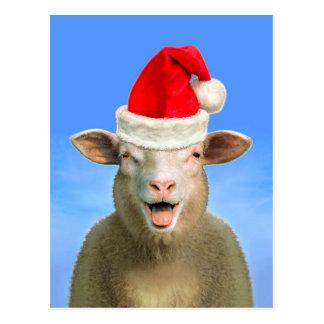 Frohe Weihnachten von Lucie Postkarte
