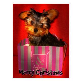 Frohe Weihnachten wenig Yorkie kundengerecht Postkarte