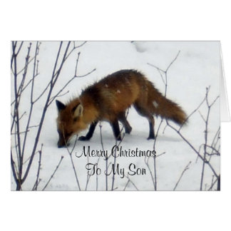 Frohe Weihnachtenc$sohn-fox im Schnee Karte