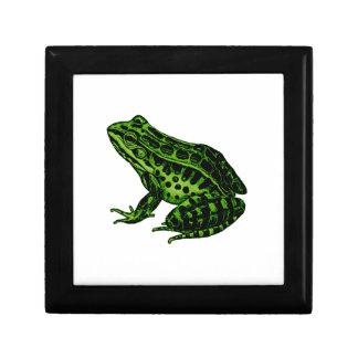 Frosch 2 erinnerungskiste
