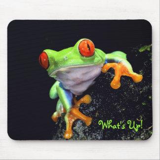 Frosch 3 Mousepad