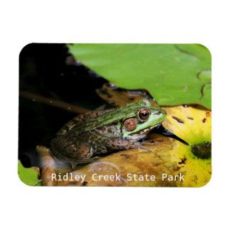 Frosch am Ridley Nebenfluss-Staats-Park Magnet