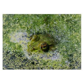 Frosch-Augen in einem Teich Schneidebrett