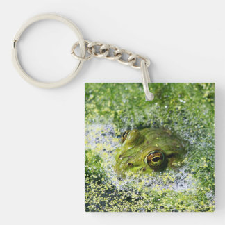 Frosch-Augen Schlüsselanhänger