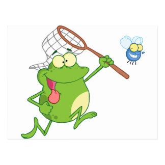 Frosch, der Fliege mit Netz jagt Postkarte