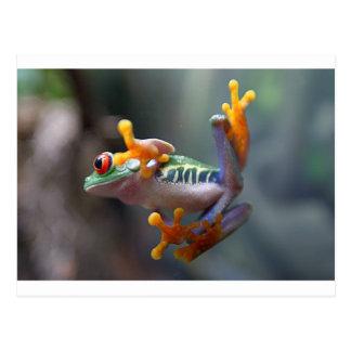 Frosch durch jr. John-Remar Postkarte
