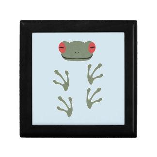 Frosch Geschenkbox