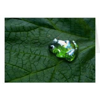 Frosch-Grün Karte