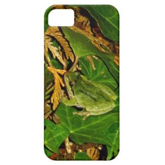 Frosch Hülle Fürs iPhone 5