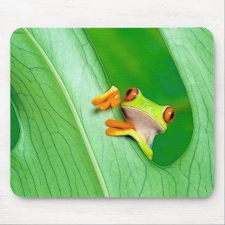 Frosch Mousepad
