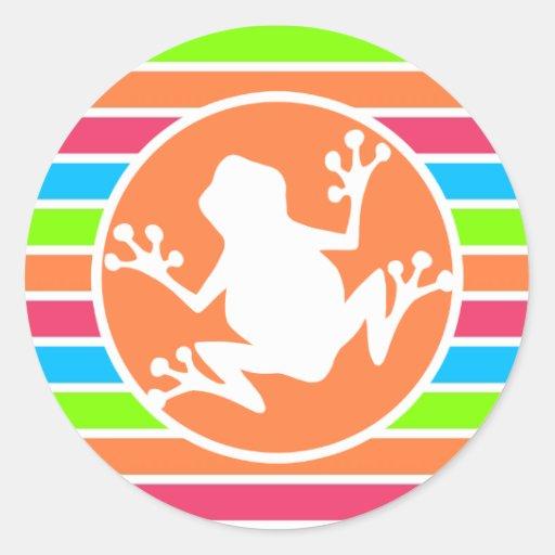 Frosch; Orange rosa blaues Grün-Neonstreifen Runder Sticker