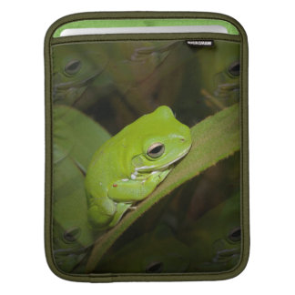 Frosch-Reflexionen iPad Hülse iPad Sleeves