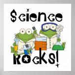 Frosch-Wissenschafts-Felsen Plakatdrucke