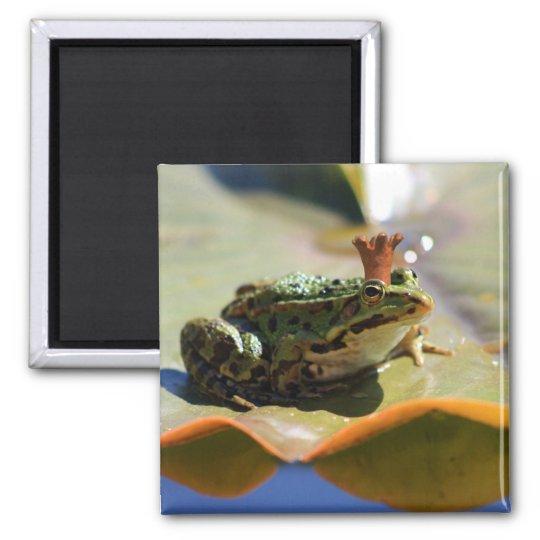 Froschkönig Quadratischer Magnet