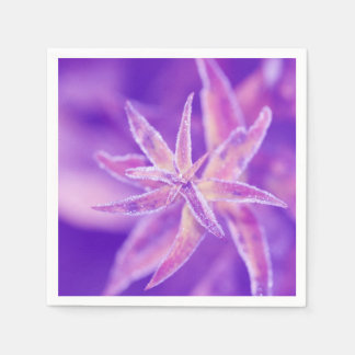 Frozen plant in purple serviette