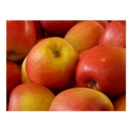 Frucht-Apfel-Herbst färbt Schicksal Postkarte