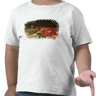 Frucht auf der Tabelle 1644 T Shirt