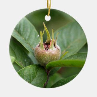 Frucht der allgemeinen Mispel Keramik Ornament