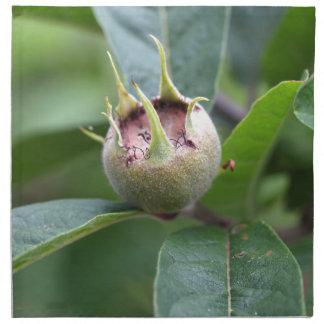Frucht der allgemeinen Mispel Serviette