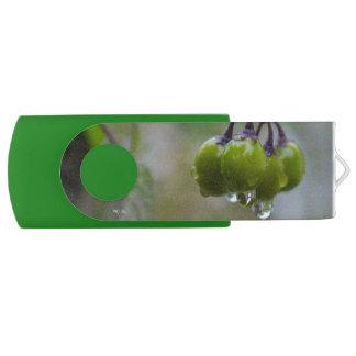 Frucht der Klarheit USB Stick