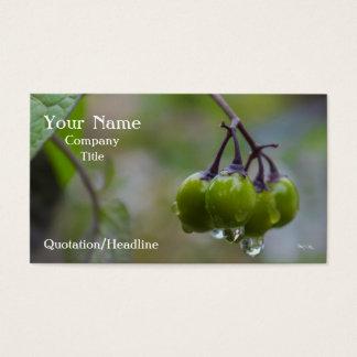 Frucht der Klarheit Visitenkarte