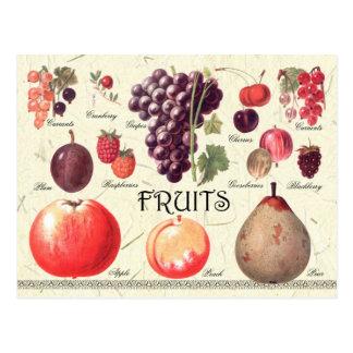 Frucht-Illustration Postkarte