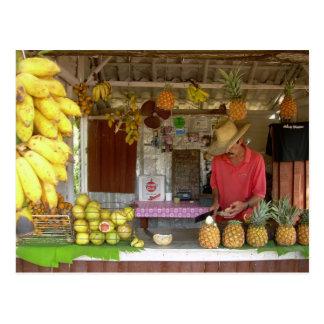 Frucht-Stall Postkarte