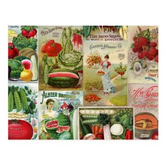 Frucht-und Veggies-Samen-Katalog-Collage Postkarte