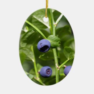 Früchte der europäischen Blaubeere Ovales Keramik Ornament