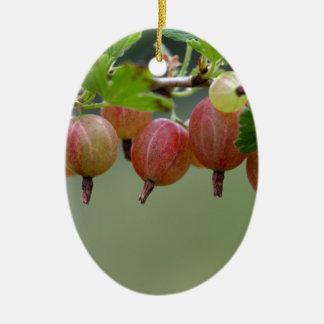 Früchte einer Stachelbeere Ovales Keramik Ornament