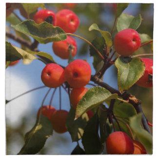 Früchte eines wilden Apfelbaums Serviette