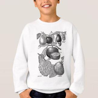 Früchte Sweatshirt