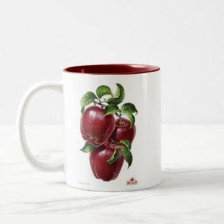 Früchte Zweifarbige Tasse