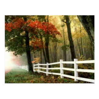 Früher Herbst-Morgen-landschaftliche Postkarte