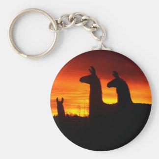 Früher Morgen-Lamas Schlüsselanhänger
