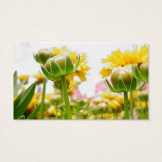 Frühjahr-Blumen in der Blüte Visitenkarte