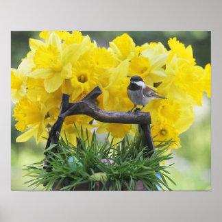 Frühjahr Chickadeeplakat Poster