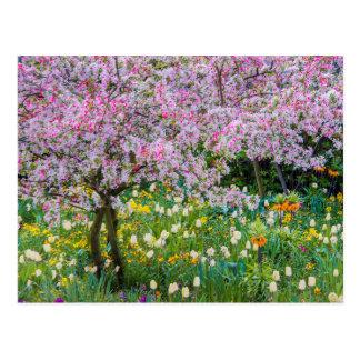 Frühjahr in Claude Monets Garten Postkarte