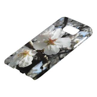 Frühjahr-Kirschblüten