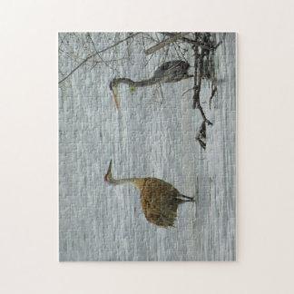 Frühjahr: Wasservogel-Freunde Puzzle