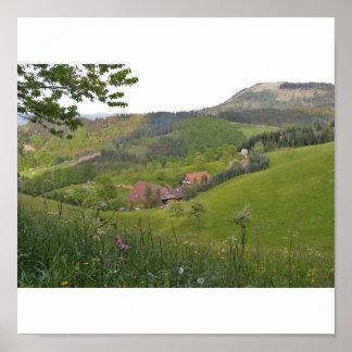 Frühling im Schwarzwald Poster