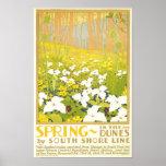 Frühling in den Dünen Poster