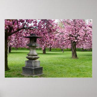 Frühling in den Paris-Kirschblüten Poster